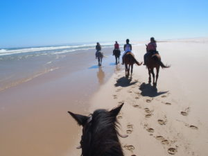Paseo a caballo por las playas de Jeffreys Bay