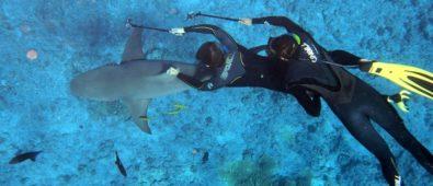 buceo islas catalinas costa rica
